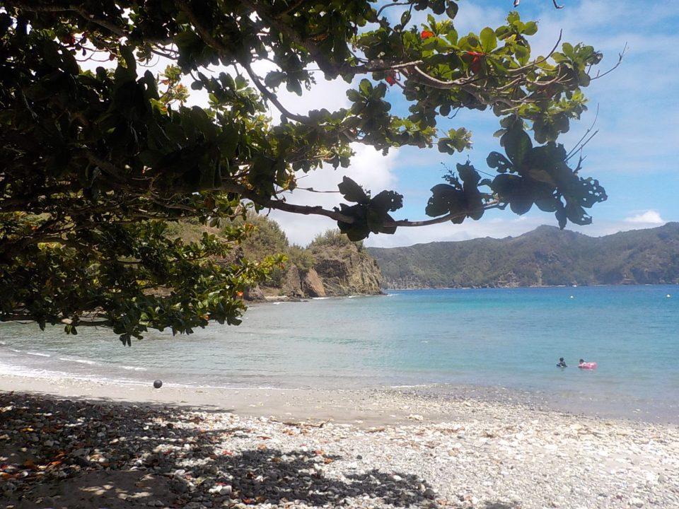 世界遺産小笠原諸島の海