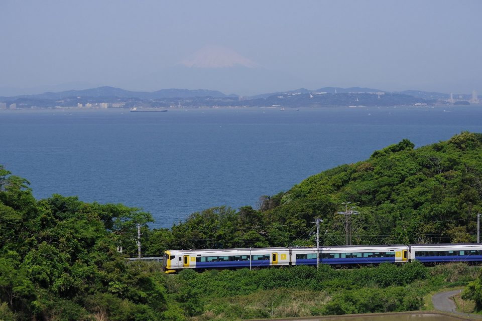 東京湾をバックに走る特急「新宿さざなみ」