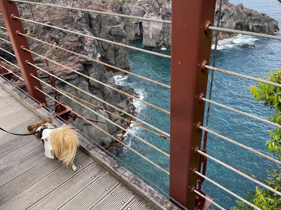 城ケ崎 門脇つり橋
