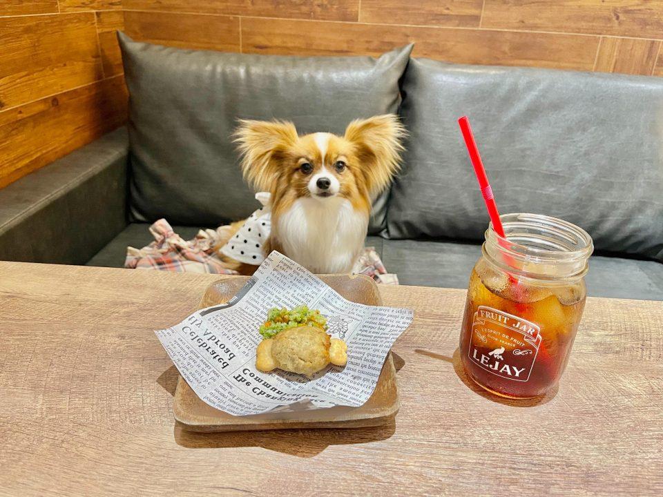 お台場 犬同伴 レストラン