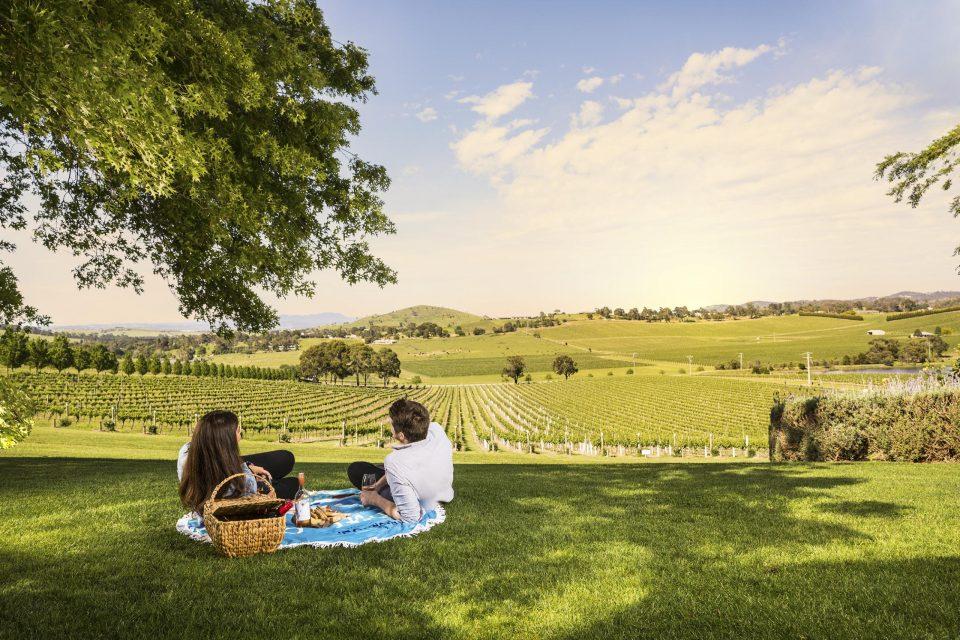 メルボルン近郊のワイン銘醸地ヤラバレー
