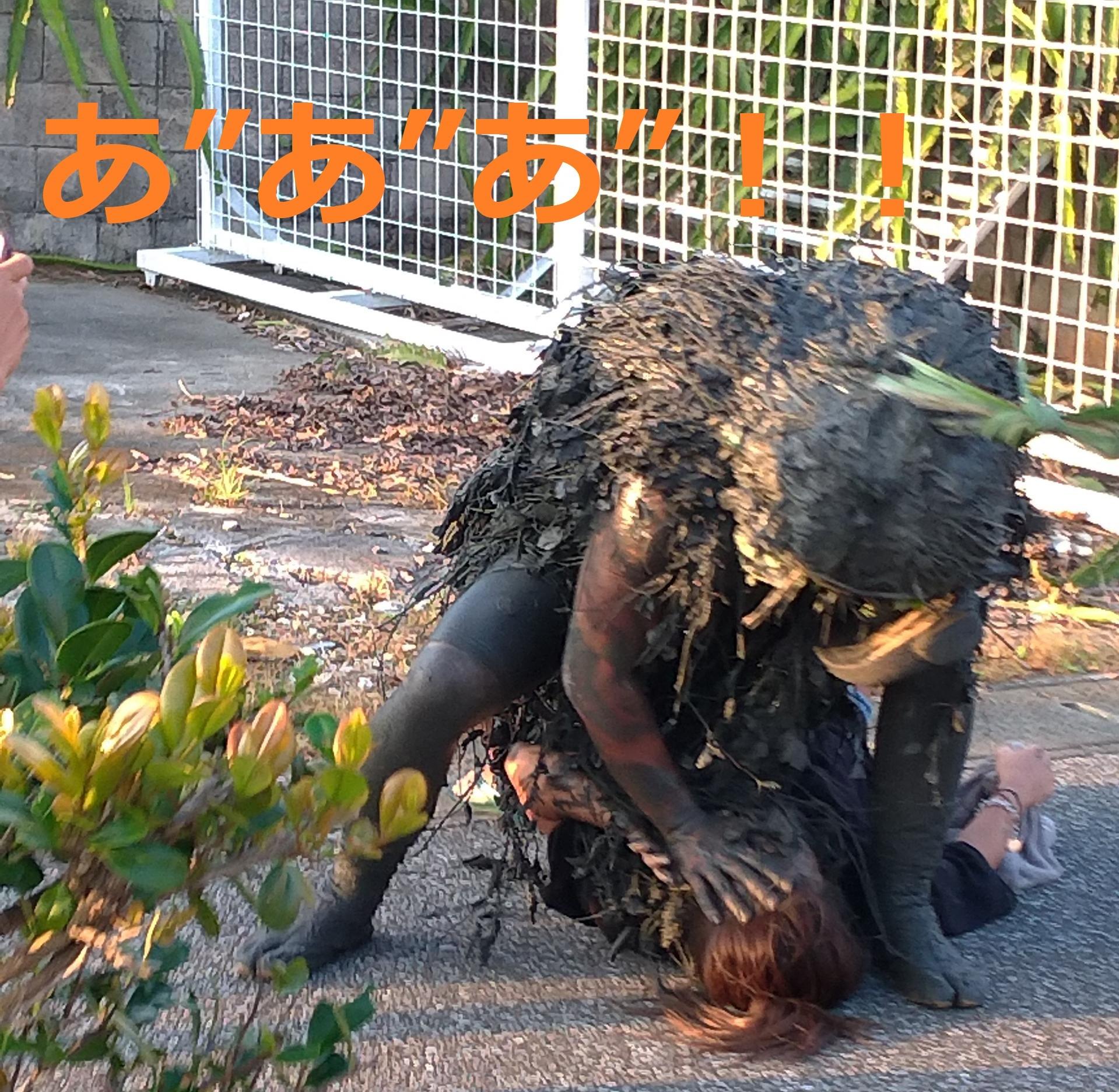 宮古島の奇祭パーントゥ
